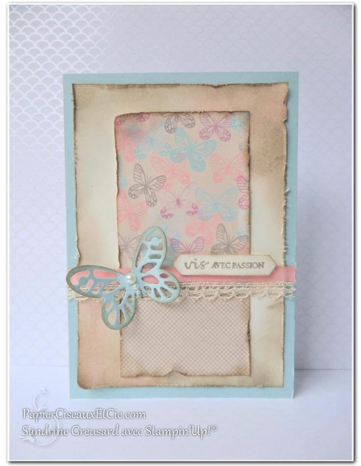 papierciseauxetcie-sandrine-stampin-up-papillon-audacieux-138135-resplendissante-143458-papier-amour-naissant-142788